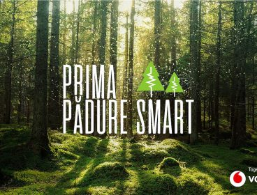 smart_forest_romania_-_photo_from_vodafone